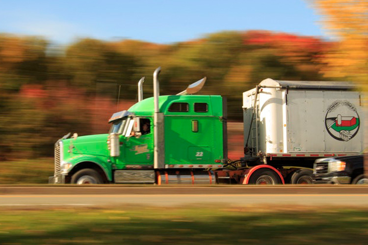 Distribuição e Transportes